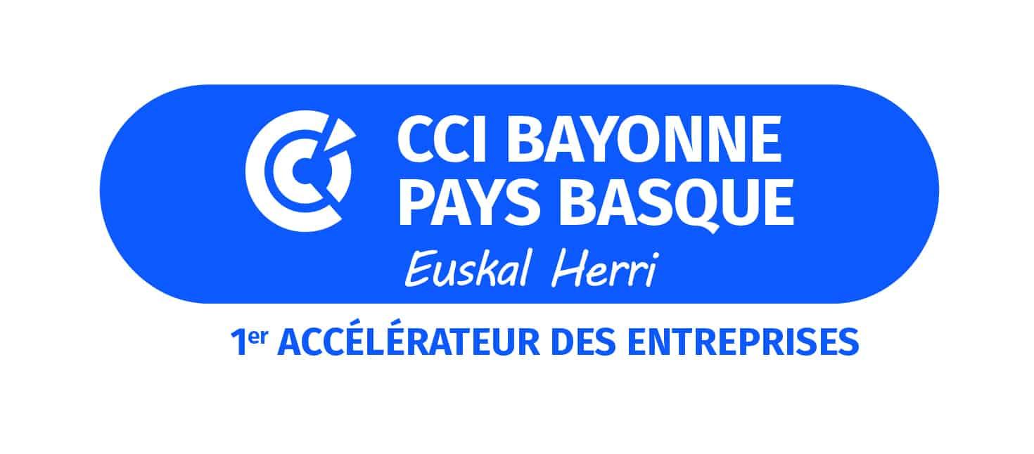 Logo CCI PRINT bleu